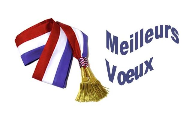 Vœux du Maire 2016