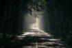 Décision de fermeture de route en forêt domaniale d'Orléans les 23 et 24 novembre